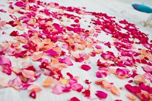 design_aisle_petals